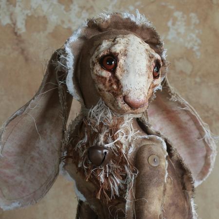 Hafni Hare